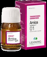 Lehning Arnica Complexe N° 1 Solution Buvable En Gouttes Fl/30ml à Saverne