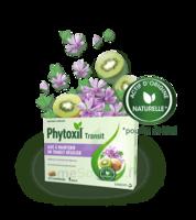 Phytoxil Transit Comprimés B/20 à Saverne