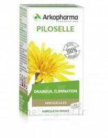 Arkogélules Piloselle Gélules Fl/45 à Saverne