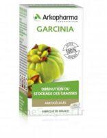 Arkogélules Garcinia Gélules Fl/45 à Saverne