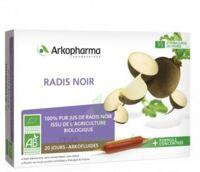 Arkofluide Bio Ultraextract Radis Noir Solution Buvable 20 Ampoules/10ml à Saverne