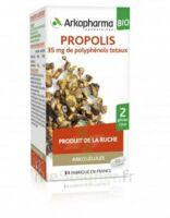 Arkogélules Propolis Bio Gélules Fl/45 à Saverne