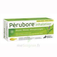 Perubore Caps Inhalation Par Vapeur Inhalation Plq/15 à Saverne