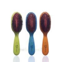 Cartel Brosse Cheveux Pneumatique Sanglier Médium à Saverne