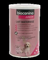 Biocanina Lait Poudre Maternisé B/400g à Saverne