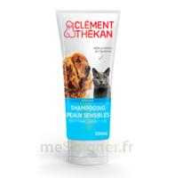 Clément Thékan Shampooing Peaux Sensibles T/200ml à Saverne