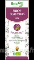 Herbalgem Sirop Bio Des Fumeurs 150ml à Saverne