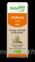 Herbalgem Energem Solution Buvable Bio Fl Cpte-gttes/30ml à Saverne