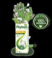 Phytoxil Toux Sans Sucre Sirop Adulte Enfant +2 Ans Fl/120ml à Saverne